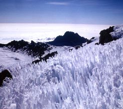 Kilimanjaro Climb; Machame Route - Semi Customized